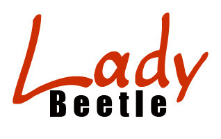 Lady Beetle Business Solutions - Townsville Accountants